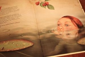 Kirjan kuvitus Stian Hole
